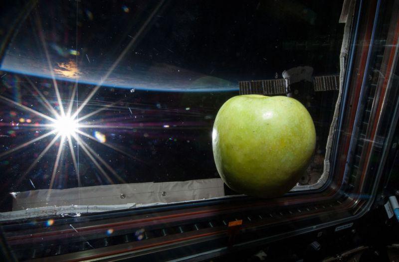 Этот снимок висит в Центральной штаб-квартире NASA - на нем изображено яблоко, которое в невесомости прислонилось к окну. Вдалеке видно яркое Солнце и силуэт Луны.
