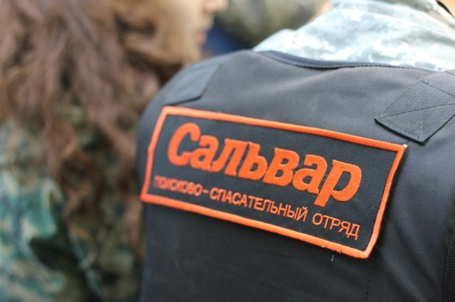 ВСмоленской области идут поиски пропавшей жительницы Ярцева