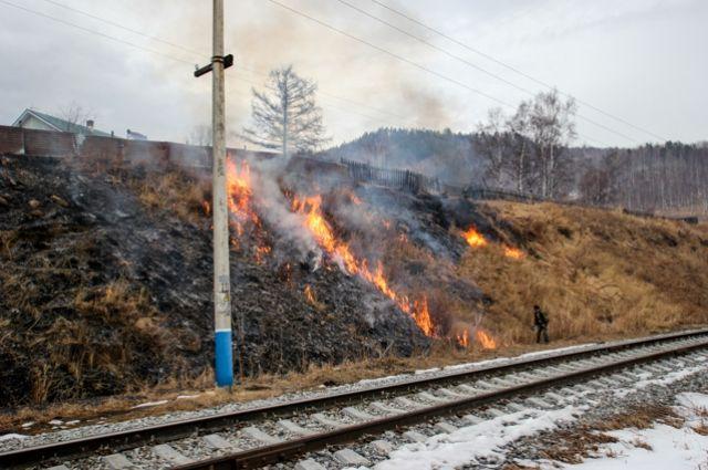 Штрафы за пал травы составляют от 2 до 500 тыс. рублей.