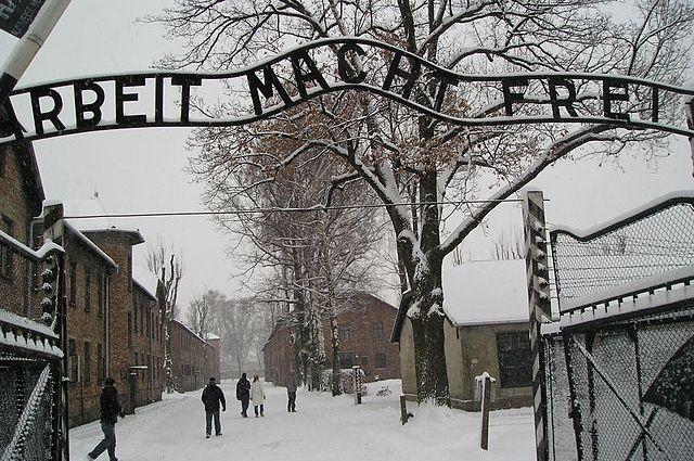 Прежнего охранника Освенцима обвиняют вубийстве 13 тыс. человек