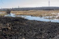 Масляных пятен, якобы появившихся на воде, найти на реке так и не удалось.