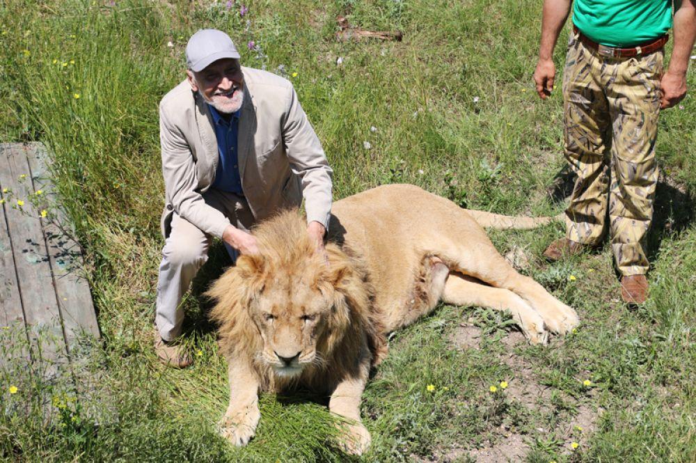 Николай Дроздов приехал в парк львов «Тайган» для съемок телепередач из серии «Лучшие зоопарки мира». 2015 год.