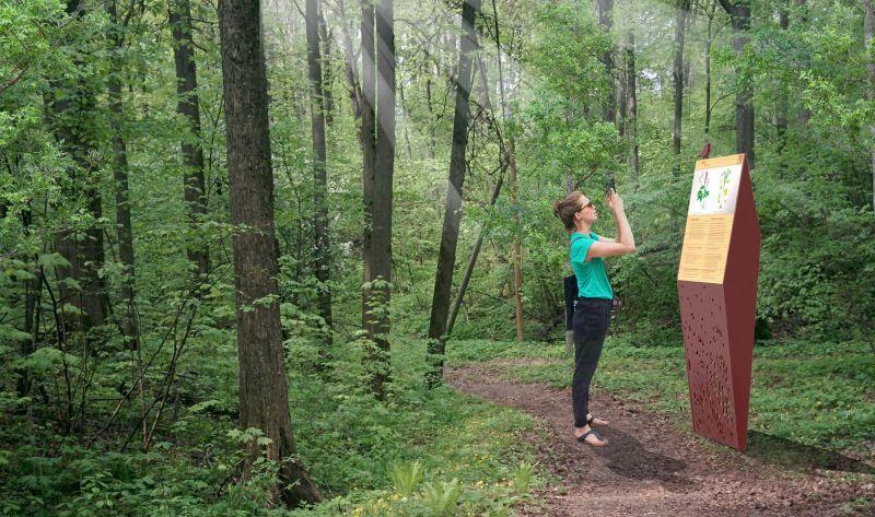 Тихая зона для бердвотчинга - наблюдения за птицами в Горкинско-Ометьевском лесу.