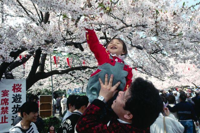 Прямой перелет в Японию будет стоить около 30 тысяч рублей.