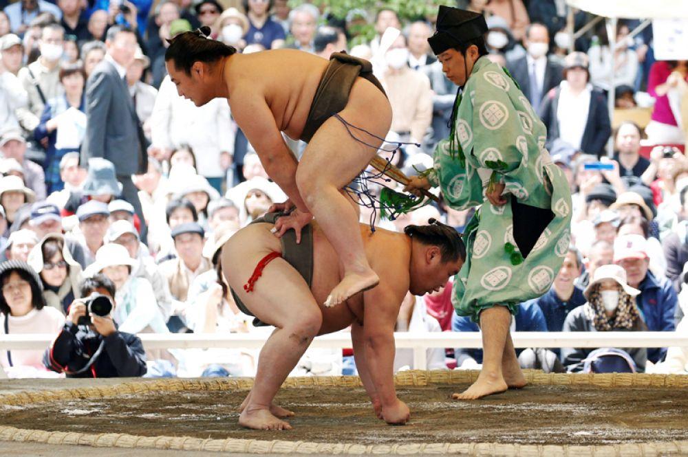 Выступление борцов сумо во время ежегодного турнира в Токио, Япония.