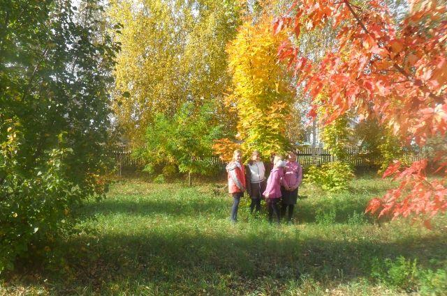 Осенью в дендрарии особенно красиво.