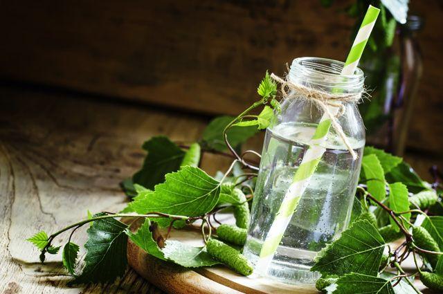 Слёзы от берёзы. Чем полезен берёзовый сок и как его собирать?