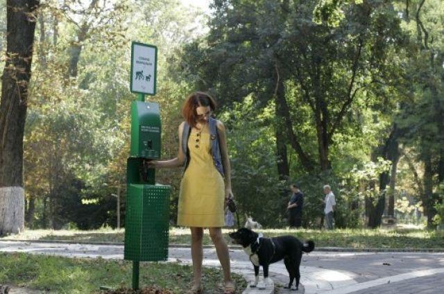 Уборка экскрементов за собакой: Рада хочет штрафовать владельцев животных