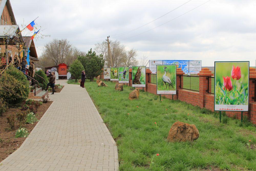 Фестиваль проводится с 2013 года.