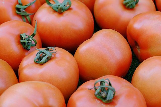 Разрешены поставки томатов еще с 5-ти турецких учреждений