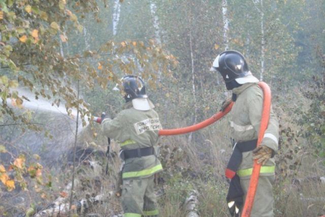 15 апреля в регионе ввели особый противопожарный режим.