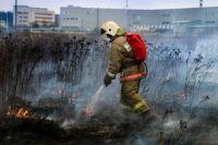 Чаще всего лесные пожары происходят именно по вине отдыхающих.