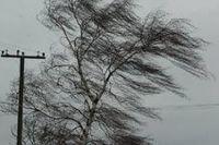В регионе ожидается шквалистый ветер.