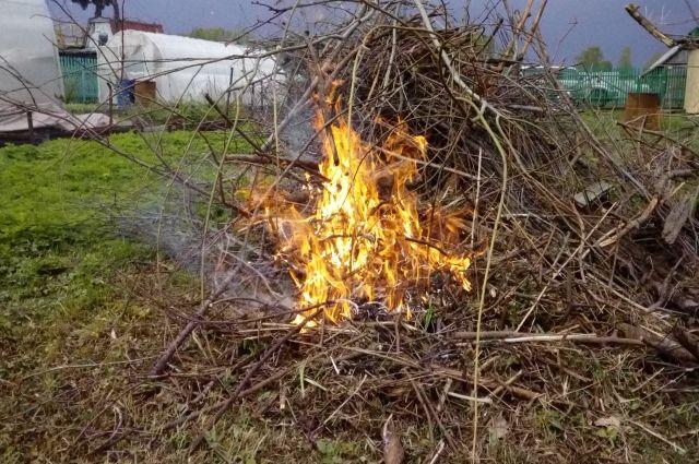 Омичам советуют не сжигать мусор на дачах.