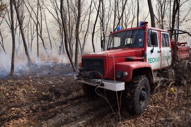 В регионе действует особый противопожарный режим.