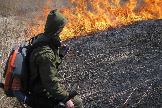 ВПриморье потушили мощный пожар налесопилке