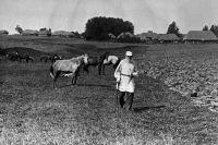 Лев Николаевич Толстой на прогулке. Ясная Поляна, 1908 год.