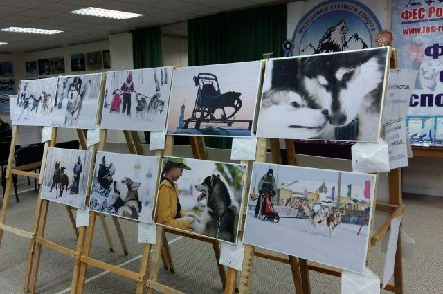 Гости смогут увидеть снимки омских фотографов.