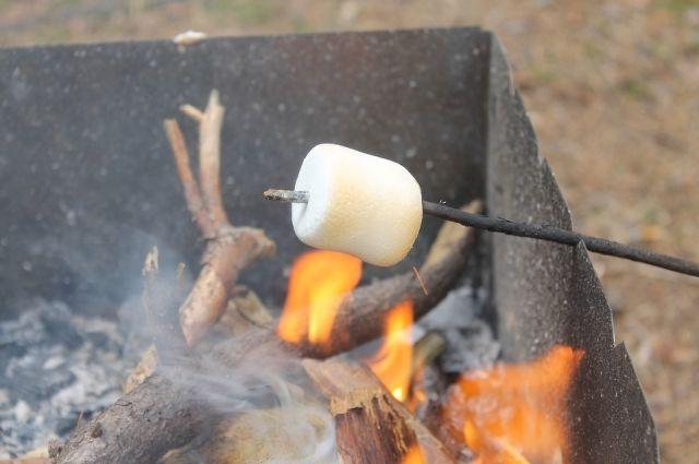 На мангале можно приготовить множество вкусных блюд.