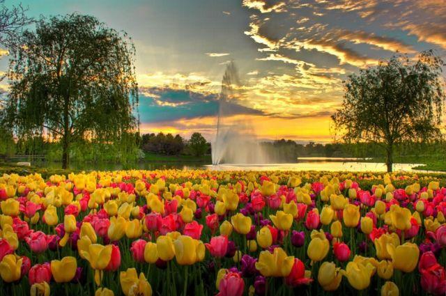 27 апреля – праздники, именинники, интересные факты дня