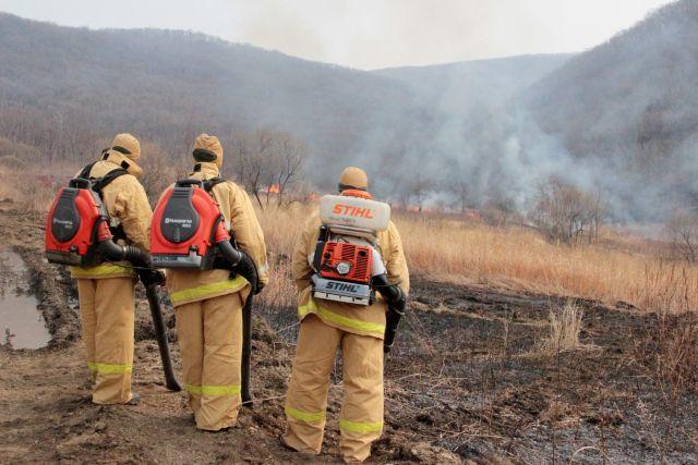 Огонь быстро распростараняется по долине к сопкам, уничтожая всё на своём пути.