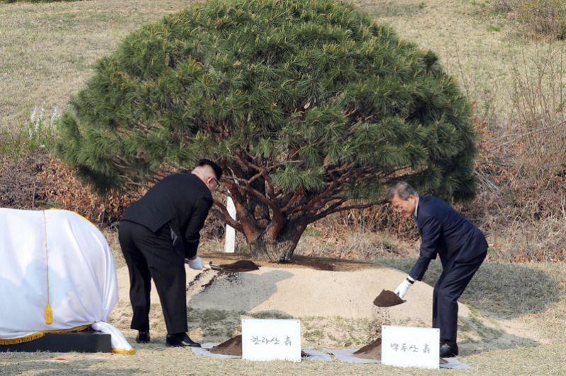 Во время встречи лидеры государств посадили в Пханмунджоме сосну — символ единства и процветания корейской нации.