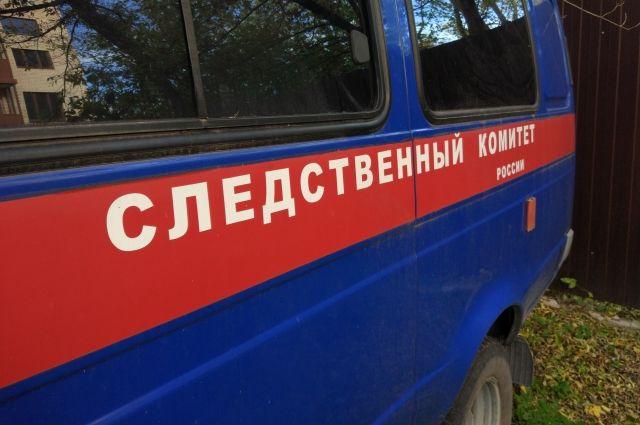 В Нижегородской области найдены тела двух детей.