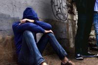 Психологи считают, что дети, выбирая жертву, берут пример из собственной семьи.