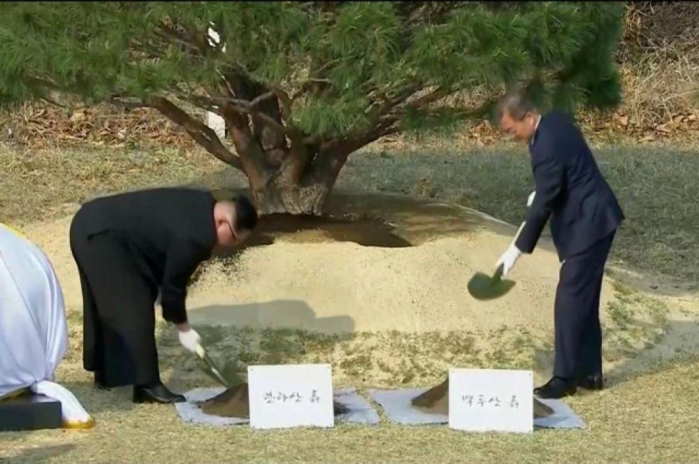 Кстати, такая историческая встреча не пройдет незамеченной и для природы - лидеры двух государств, в знак примирения, посадили деревья рядом друг с другом.