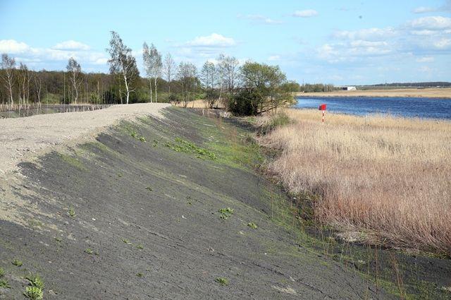На территории бывшего золоотвала «Дарита» в Калининграде хотят разбить парк.