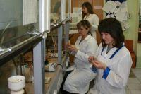 Над противоопухолевым агентом на основе бетулина пермские учёные работают около десяти лет.