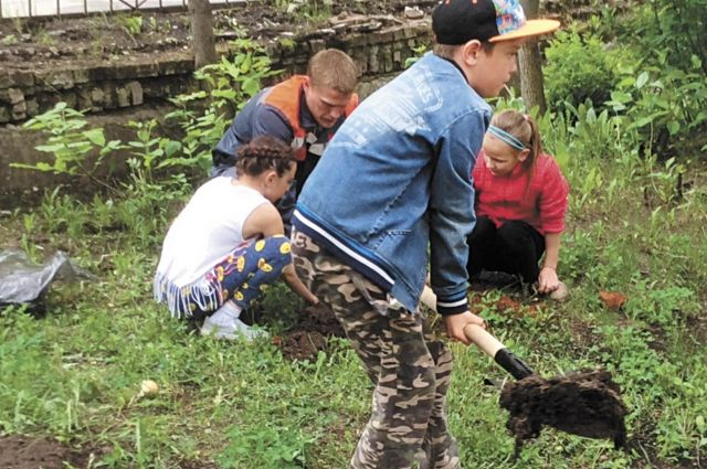 В двух школах вместе с ребятами посадили ели, а ещё в одной - молодые дубки.
