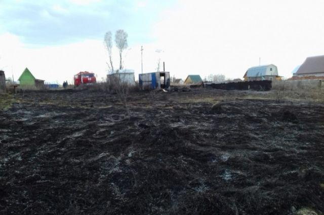 Штрафы заподжог травы возрастут вдвое вНовосибирской области