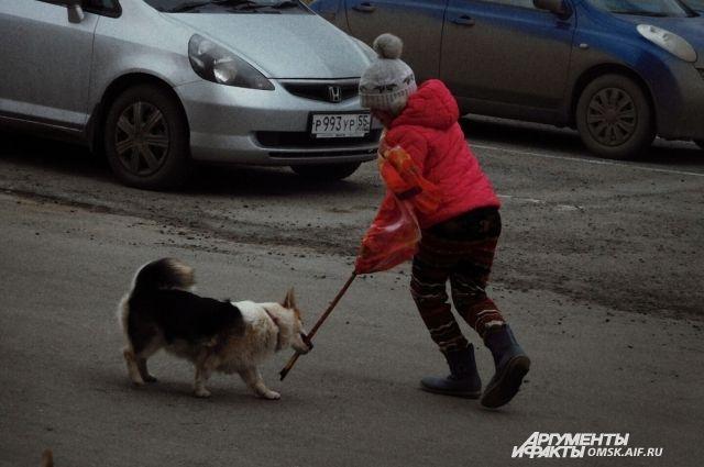 К животным надо относиться с любовью!