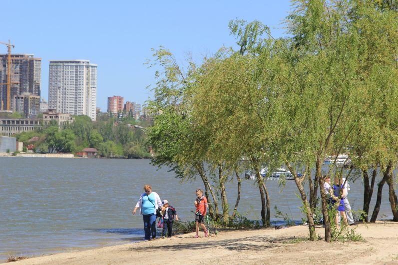 На его территории высажено 502 дерева, 2922 кустарника, 1999 многолетников, а также засеяны газоны на площади 26,4 тысяч кв. м.