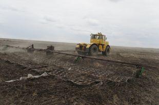 На полях области предприятия ведут подкормку и боронование кормовых угодий, озимых.