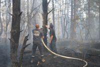 В Черниговской области продолжают тушить масштабный лесной пожар