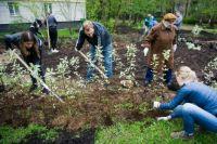 Высадка деревьев и кустарников в рамках акции «Миллион деревьев» на востоке Москвы.