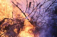 С 3 мая в регионе объявлен особый противопожарный режим.