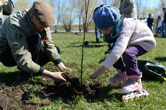 ></a></div> <p>Она решает две очень важные задачи. С одной стороны, Подмосковье зеленеет - появляются новые сады, парки и скверы, восстанавливаются леса, пострадавшие от короеда-типографа. С другой - деревья в память о погибших воинах - это хорошая традиция нашего народа и вместе с тем патриотическое воспитание молодого поколения, сохранение памяти о тех, кто отдал свои жизни за наше мирное сегодня.</p> <p>Уже подготовлены сеянцы, саженцы и посадочный инвентарь. Всем неравнодушным людям остаётся всего лишь прийти и посадить деревья. Как показывает опыт прошлых лет, жители области делают это с удовольствием -  приходят с друзьями, а также семьями и целыми трудовыми коллективами. В  этот раз, по прогнозам, к акции присоединятся 200 тыс. человек.</p> <div class=