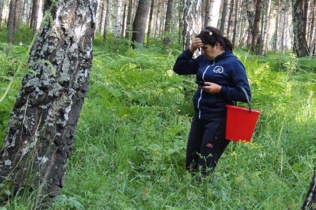 Сообщить опожаре вЮгре можно через мобильное приложение «Берегите лес»