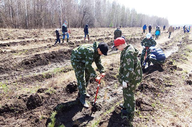 Сотрудники предприятия сажали деревья вместе с детьми.