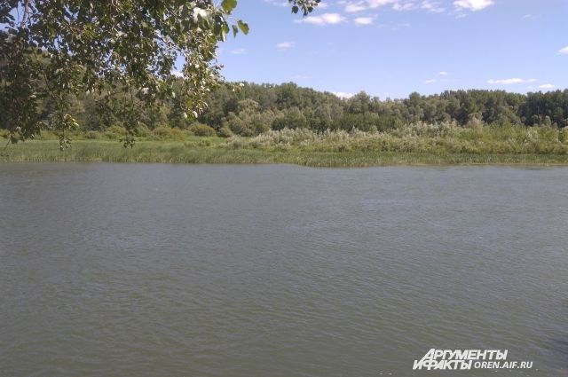 В Оренбурге в реке Сакмара обнаружено тело мужчины.