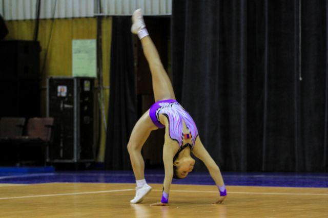 Номер спортсмена  должен включать в себя элементы базовой аэробики и других её видов (степ, латино, хип-хоп).