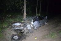 ДТП под Николаевом: в больницу попала целая семья