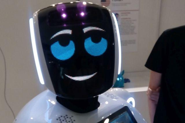 Роботы помогут юным тюменцам отправиться в Тайланд