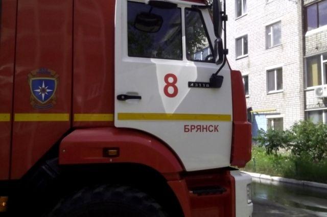 По данным МЧС, пострадавших в пожаре нет.