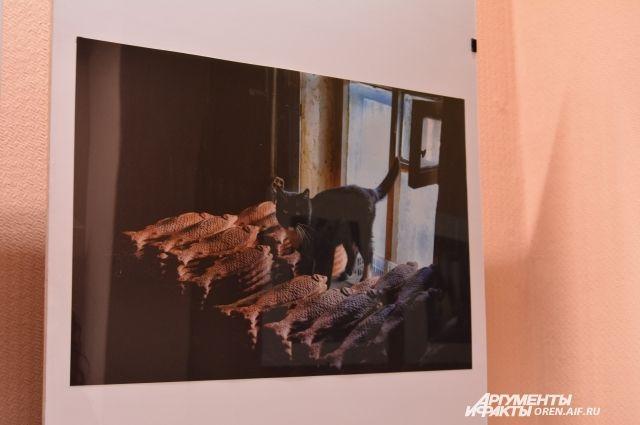 На выставке только одна работа, где изображено живое существо.