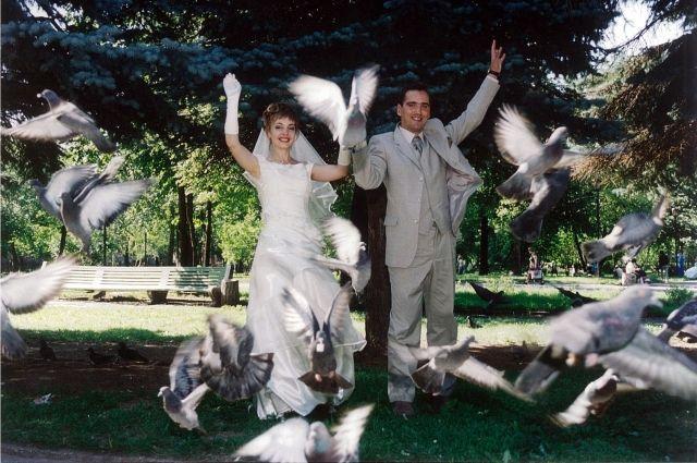 Для свадебной фотографии решили прикормить голубей хлебом... но в ближайшем магазине не осталось ни одной буханки.