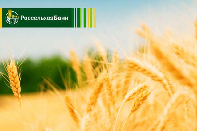 Банк создает благоприятные условия для бизнеса в АПК